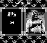 WWF War Zone Game Boy The man with the mask