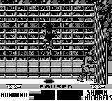 WWF War Zone Game Boy Mankind try to escape...