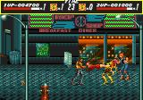 Streets of Rage Genesis Adam and Blaze with a two-player team move