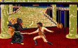 Sinbad and the Throne of the Falcon Amiga If Damaron is taken over, Sinbad will challenge Prince Camaral in a fight to the death