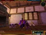 Asheron's Call Windows A few of the pack dolls in the game
