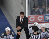 NHL 07 Windows Coach talking to referee.