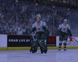 NHL 07 Windows Dallas Stars goalie and player