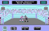Star Rank Boxing II DOS A fight in progress (CGA)