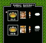 Legends of the Diamond NES Choose between the old and new stadiums.