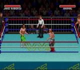 WWF Super WrestleMania SNES Tag team. I'm Jake the Snake and the Undertaker.