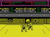 Budokan: The Martial Spirit MSX Karate fight