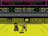 Budokan: The Martial Spirit MSX Kendo vs karate