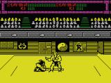 Budokan: The Martial Spirit MSX Kendo fighter losing the match.
