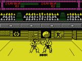 Budokan: The Martial Spirit MSX Nunchaku vs Karate
