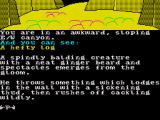 The Very Big Cave Adventure ZX Spectrum From the description of the man he sounds like Clive Sinclair