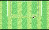 G.P. Tennis Manager Commodore 64 You are trying to dodge the ball with a racket (grass)