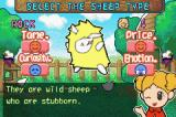 Sheep Game Boy Advance There are four different type of sheep to herd