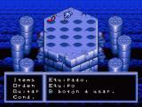 Illusion of Gaia SNES You can equip one item at a time