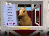 Barbie Adventure: Riding Club Windows Selecting a name