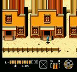The Lone Ranger NES You can enter these houses