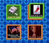 Pro Sport Hockey SNES Options on the season screen
