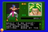 Dragon Ball Z: Taiketsu Game Boy Advance Broly's bio