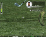 Tiger Woods PGA Tour 07 Windows Long grass is not a good thing for golfers.