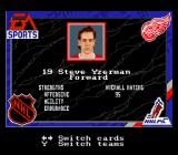NHL '94 SNES The game even includes a digital trading card of every player. Here's looking at you, Steve.