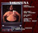 WWF Raw SNES You can play as Yokozuna, too.