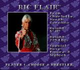 WWF Royal Rumble SNES Natureboy Ric Flair