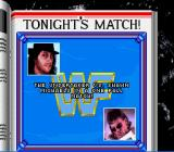 WWF Royal Rumble SNES Let's play One on One.