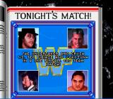 WWF Royal Rumble SNES A tag team match