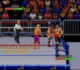 WWF Royal Rumble SNES Switching partners during tag team match.