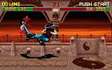 Mortal Kombat II DOS Sub-zero and Kung Lao in the flight
