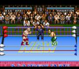 Natsume Championship Wrestling SNES Fight!