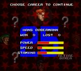 Riddick Bowe Boxing SNES Choose a boxer for a career.