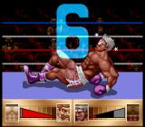 Riddick Bowe Boxing SNES He's not going to get up in time.