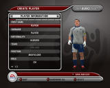 UEFA Euro 2008 Windows You can create you own player.