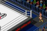 Fire Pro Wrestling Game Boy Advance The wrestlers enter the ring.