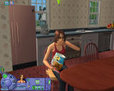 The Sims: Life Stories Windows Sims have to eat