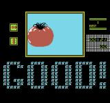Kineko: The Monitor Puzzle - Vol. II NES The tomato is finished