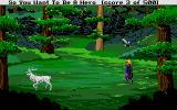 Hero's Quest: So You Want To Be A Hero Atari ST Not all forest encounters are random