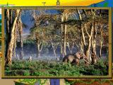 Scholastic's The Magic School Bus Explores the Rainforest Windows This picture shows the African rainforest.