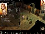 Neverwinter Nights Windows Character information