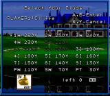 Hole in One SNES You also get to choose your club set for the match.