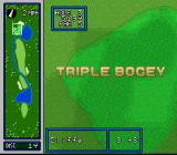 Hole in One SNES This is a pretty accurate representation of my golfing ability...