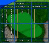 Hole in One SNES You can also check out the scorecard to view you many *ahem* successes...