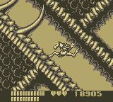 Battletoads Game Boy Fifth Level