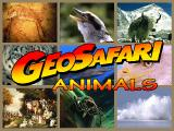 GeoSafari: Animals Windows Title screen