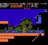 Castlevania III: Dracula's Curse  NES In a spooky village, fighting zombies.