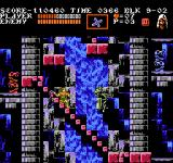 Castlevania III: Dracula's Curse  NES Climbing stairs in front of a waterfall.