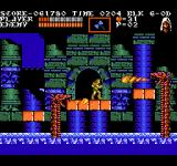 Castlevania III: Dracula's Curse  NES Why do fire-breathing dragons live in water? Strange...