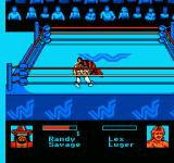 WWF King of the Ring NES Pinning an opponent