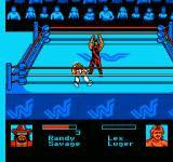 WWF King of the Ring NES The match is over